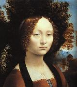 Leonardo  Da Vinci Portrait of Ginerva de'Benci-u Germany oil painting reproduction