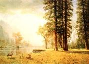 Albert Bierstadt Hetch Hetchy Valley oil painting picture wholesale