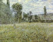 Claude Monet Across the Meadow oil painting picture wholesale