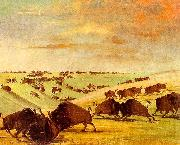 George Catlin Buffalo Bulls Fighting in Running Season-Upper Missouri oil painting artist