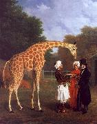 Jacques-Laurent Agasse The Nubian Giraffe oil