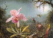 Martin Johnson Heade Cattleya Orchid Three Brazilian Hummingbirds oil painting picture wholesale