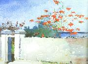 Winslow Homer A Wall, Nassau oil painting picture wholesale