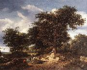RUISDAEL, Jacob Isaackszon van The Great Oak af oil painting picture wholesale