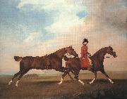 STUBBS, George William Anderson with Two Saddle-horses er oil painting picture wholesale