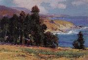 Anna Hills July Afternoon,Laguma Beach oil