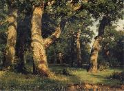 Ivan Shishkin Oak of the Forest oil painting reproduction