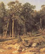 Ivan Shishkin A Pine Forest Mast-Timber forest in Viatka Province oil painting picture wholesale