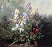 Barbara Bodichon Landscape with Irises oil painting picture wholesale