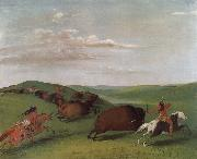 George Catlin Buffalo Chase with Bows and Lances oil painting picture wholesale
