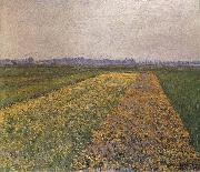 Gustave Caillebotte Yellow field oil painting reproduction