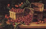 Levi Wells Prentice Country Berries oil