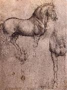 LEONARDO da Vinci Studies of horses oil painting picture wholesale