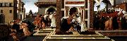 BOTTICELLI, Sandro Last Miracle and the Death of St Zenobius oil painting picture wholesale