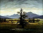 Caspar David Friedrich Village Landscape in Morning Light oil painting picture wholesale
