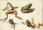 GHEYN, Jacob de II Four Studies of Frogs oil painting artist