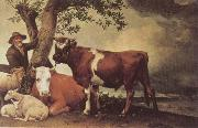 POTTER, Paulus Young Bull oil painting picture wholesale