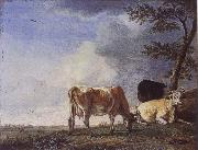 POTTER, Paulus Three Cows in a Pasture oil painting picture wholesale