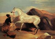 Sir Edwin Landseer Arab stable ion oil painting picture wholesale