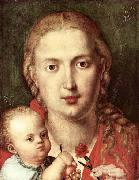 Albrecht Durer The Madonna of the Carnation oil painting picture wholesale