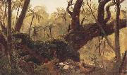 Frederic E.Church Rain Forest,jamaica,West Indies oil painting picture wholesale