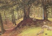 Richard Redgrave,RA Parkhurst Woods,Abinger (mk46) oil painting picture wholesale