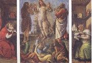 Sandro Botticelli Transfiguration,with St Jerome(at left) and St Augustine(at right) oil painting picture wholesale