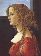 Sandro Botticelli Porfile of a Young Woman (mk45) oil painting picture wholesale