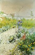 Carl Larsson i kakstradgarden oil painting reproduction