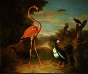 Jakob Bogdani Flamingo and Other Birds in a Landscape oil painting artist