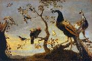 Frans Snyders Group of Birds Perched on Branches oil