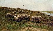 Mauve, Anton Sheep on a dyke oil painting artist