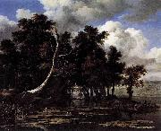 Jacob Isaacksz. van Ruisdael Oaks by a Lake with Waterlilies oil painting reproduction