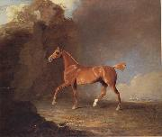 Benjamin Marshall A Golden Chestnut Racehorse by a Rock Formation With a Town Beyond oil painting artist