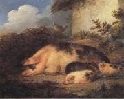 George Morland A Sow and Her Piglets oil