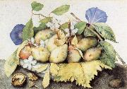Giovanna Garzoni Plate of Plums with Jasmine and Nuts oil painting picture wholesale