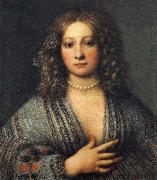 Girolamo Forabosco Portrait of a Woman oil painting picture wholesale