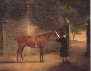 John Ferneley Mr Wombell's Hunter with a Groom in a Courtyard oil painting picture wholesale