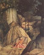 Lorenzo Lotto Jerome in the Desert (mk05) oil painting artist