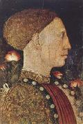 PISANELLO Portrait of Lionello d'Este (mk08) oil painting artist