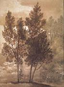Claude Lorrain Trees (mk17) oil painting picture wholesale