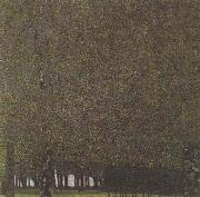 Gustav Klimt The Park (mk20) oil painting picture wholesale