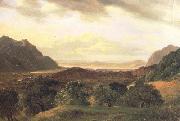 Alexandre Calame The Rhone Valley at Bex with a View to the Lake of Geneva (nn02) oil painting picture wholesale
