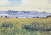 Ferdinand Hodler Lake Geneva from St Prex (nn02) oil painting picture wholesale