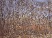Ferdinand Hodler The Beech Forest (nn02) oil painting picture wholesale