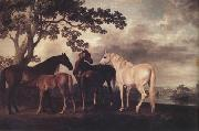 George Stubbs Mares and Foais in a Landscape (nn03) oil painting artist