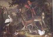 Jakob Bogdani Birds and deer in a Garden (mk25) oil painting picture wholesale
