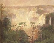 Pedro Blanes Cataracts of the Iguazu (nn02) oil painting picture wholesale
