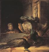 REMBRANDT Harmenszoon van Rijn Still life with two dead Peacocks and a Girl (mk33) oil painting picture wholesale