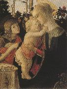 Sandro Botticelli Madonna of the Rose Garden or Madonna and Child with St john the Baptist (mk36) oil painting picture wholesale